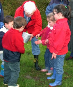 Children and adults take part in a recent Transition Inishowen Tree Planting Party.